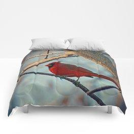 Pretty Male Cardinal Comforters