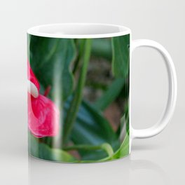 Red Flamingo Flower I Coffee Mug