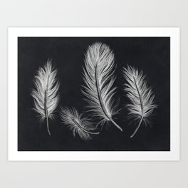 Chalk feather collection Art Print