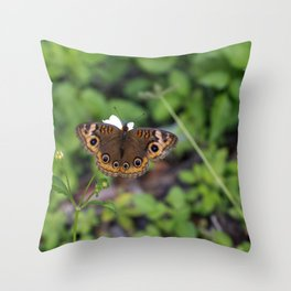 Butterfly. Throw Pillow