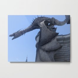 Nice one Dragon! Metal Print
