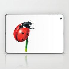 Ladybug   Colored pencil drawing Laptop & iPad Skin