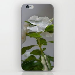 WHITE VINCA iPhone Skin