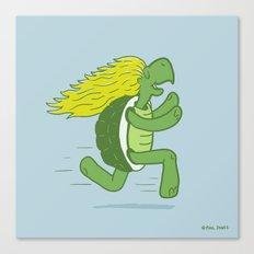 Tortoise and that Hair Canvas Print