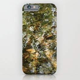 Tree Reflected in Shallow Water iPhone Case