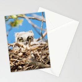 Greathorned Owlet Stationery Cards