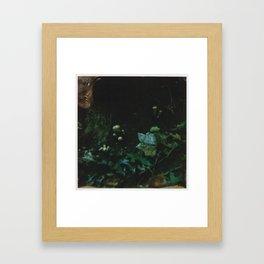 Earthen Phase Framed Art Print
