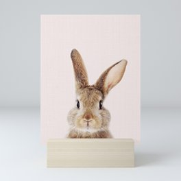 Baby Rabbit, Bunny With Pink Backgrount, Baby Animals Art Print By Synplus Mini Art Print