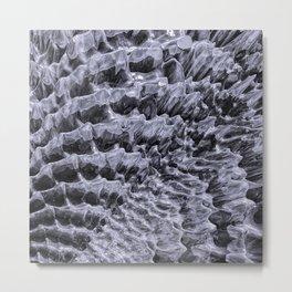 Ice Fields of Antarctica Metal Print