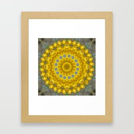 Forsythia 1 Framed Art Print