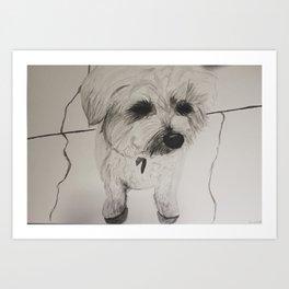 My Dog Mulligan Art Print