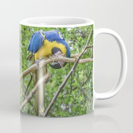 South American Couple of Parrots Coffee Mug
