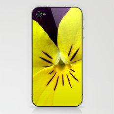 Purple Yellow Flower iPhone & iPod Skin