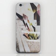 Ordinary Piece Of Luck iPhone & iPod Skin