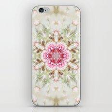 romantic rose (pattern/pillow) iPhone & iPod Skin