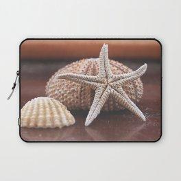 seashells 3 Laptop Sleeve