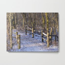 Chilly Trail Metal Print