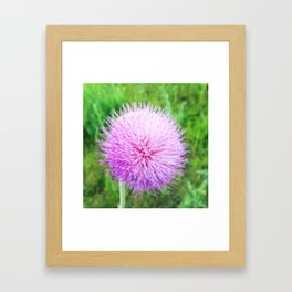 Flower Sphere Framed Art Print