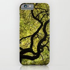 Japanese Maple Tree Slim Case iPhone 6