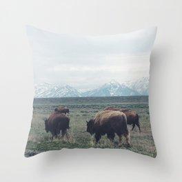 Roaming Buffalo Throw Pillow