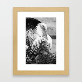 bird's doin' Framed Art Print