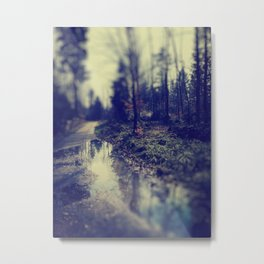 In the forrest Metal Print