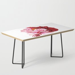 Bi-Color Peony Flower Watercolor Illustration Coffee Table
