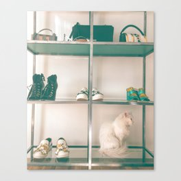Cats & Heels Canvas Print
