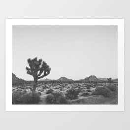 JOSHUA TREE V / California Art Print