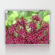 Purple flower Laptop & iPad Skin