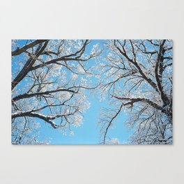 February I Canvas Print