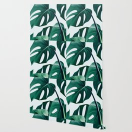 Monstera #society6 #artprints #buyart Wallpaper
