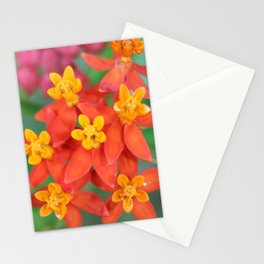 Succulent Red and Yellow Flower II Stationery Cards