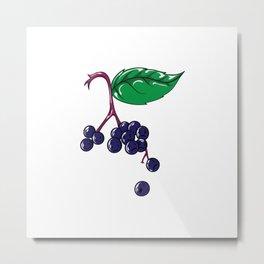 Elderberries Sambucus Metal Print