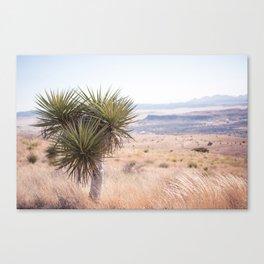 Marfa I - Home on the Range Canvas Print