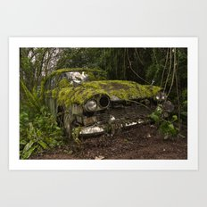 A (non) rolling car gathers some moss Art Print