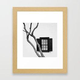 Crepe Myrtle & Lace Framed Art Print