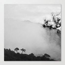 """Breathe...."". BN Canvas Print"