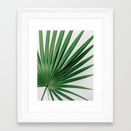 Palm Leaf Detail Framed Art Print