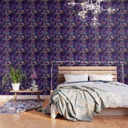 Cats  New colour No. 1 popularity 316 Wallpaper