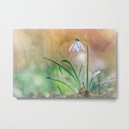 Match your nature with Nature Metal Print