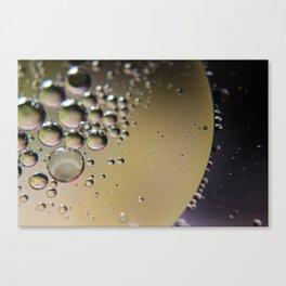 MOW3 Canvas Print