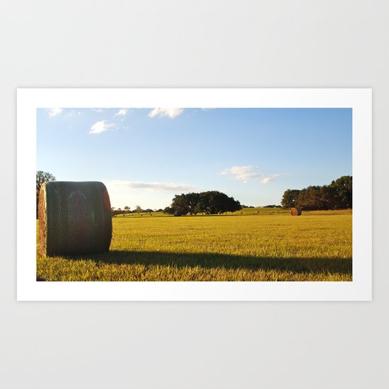 hay there Art Print