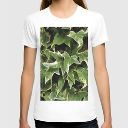 Variegated Ivy T-shirt