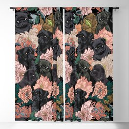 Because Black Pug Blackout Curtain