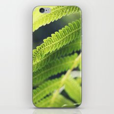 Simple Fern iPhone & iPod Skin
