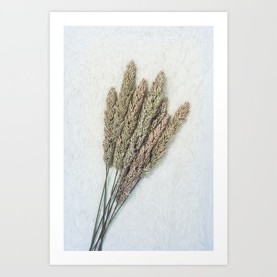 Summer Grass III Art Print