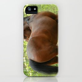 Beautiful Mare iPhone Case