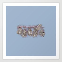Possum Family - Blue Grey Art Print