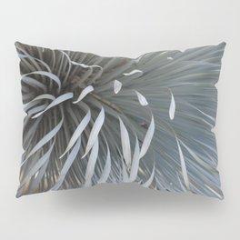 Growing grays Pillow Sham